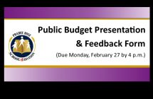 Public Budget Presentation and Feedback Form